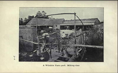 250 Vintage & Rare books on Genealogy,Social & General History of Wiltshire