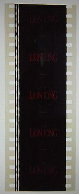 The Lion King 35mm Unmounted film cells