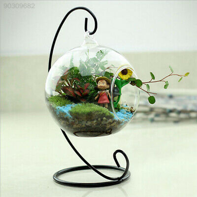 2E4F Cute Glass Round with 1 Hole Flower Plant Hanging Vase Container Home Decor
