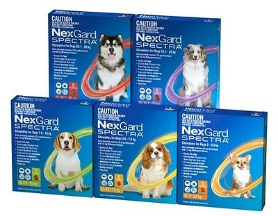 NexGard Spectra Chewables For Dogs 7.6-15kg 6Pack