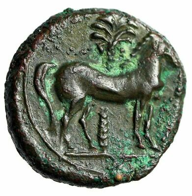 "Zeugitania, Carthage AE15 ""Wreathed Tanit & Horse By Palm Tree"" About EF"