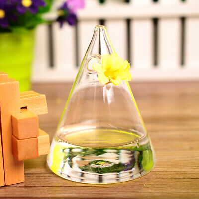 5B96 Unique Lovely Cone Glass Flower Vase Hydroponics Geometric Hanging Party