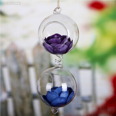 2B2C Transparent Glass Vase for Home Garden Decor Glass Hanging Decor Container