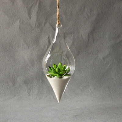 8479 Hanging Glass Vase Hanging Terrarium Flower Clear Creative Home Decor