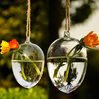 FD8F Hanging Drop Round Crystal Flower Vase Hydroponic Container Home Decor