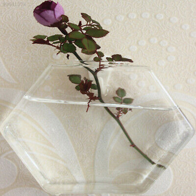 98AE Home Clear Sexangle Glass Flowerpot Mini Wall Hanging Water Plant Vase Tank
