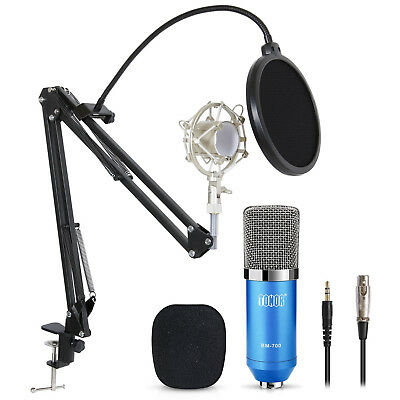 Professional Condenser Microphone Audio Studio Recording Mic W/Stand Shock Mount