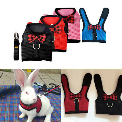 Pet Mesh Soft Harness With Leash Small Animal Vest Lead for Hamster Rabbit Bunny