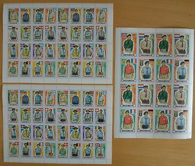 G611. Ajman - MNH - Scouts - Full sheet - Wholesale