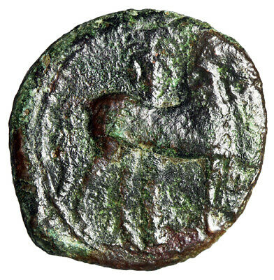 """PRE PUNIC WAR Carthage Greek Coin """"Head of Tanit & Horse By Tree"""" CERTIFIED"""