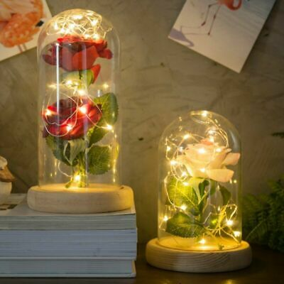 Eternal Love Preserved Artificial Rose Flowers Glass Cover With 20LED Light Gift
