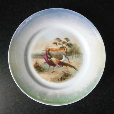 Vintage Bavarian Lustre China Beautiful Hand Painted Pheasant Display Plate