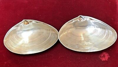 Vintage 2  Sterling Silver Signed Wallace Clam  Shell Dish Nut Trinket 4020 Soap