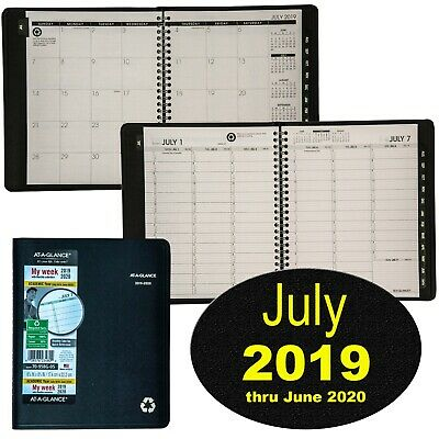 At-A-Glance 70-958G-05 July 2019 thru June 2020 Weekly Monthly Appointment Book
