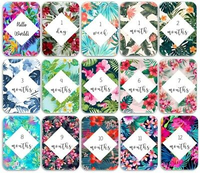 Tropical Flowers Baby Age Milestone Cards. Pack of 15. Baby Shower Gift.