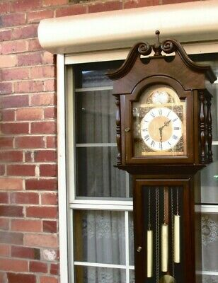Grandfather Clock Tempus Fugit Germany (Not Working)