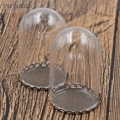 2pcs Miniature Glass Display Bell Jar with Base Dollhouse Decor Doll Accessories