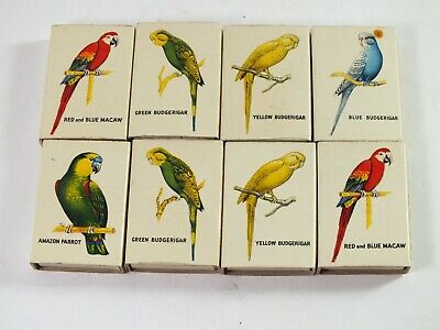 Collection of Budgerigars & Parrot Bird Empty Matchboxes Bryant & May - Budgies