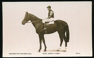 Horse racing Postcard Wedge H Cairns The Rose Racehorse Post Card Series