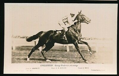 Horse racing Postcard Englefield L Franklin Horseracing Racehorse