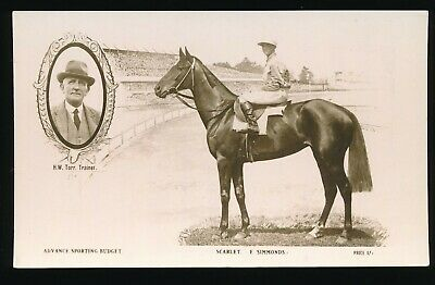 Horse racing Postcard Scarlet F Simmonds Advance Sporting Budget Photo Cards