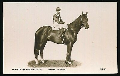 Horse racing Postcard Telecles P Kelly The Rose Racehorse Post Card Series