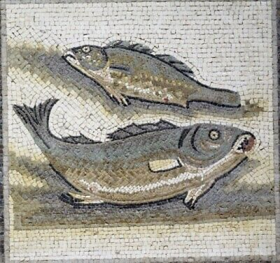 Two Fish  1st-3rd Century BC  mosaic Poster Print (18 x 24)