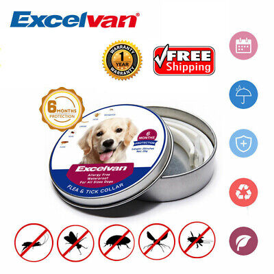 """25"""" Adjustable Flea Tick Collar For All Size Dogs 6 Months Protection Waterproof"""