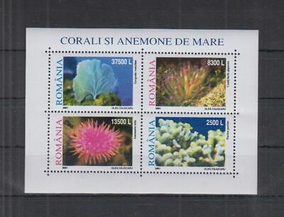 L613. Romania - MNH - Nature - Marine Life - Coral Reefs