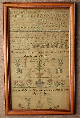 1865 SAMPLER by AMELIA WILLS 59cm x 37cm