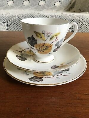 "Vintage Queen Anne ""Ashley"" Trio Teacup Plate and Saucer High Tea"
