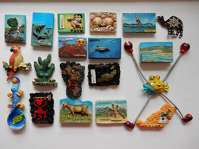 One Selected 3D Souvenir Fridge Magnet from Canary Islands Spain