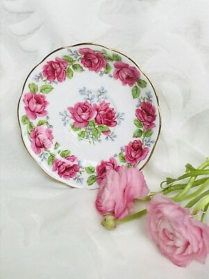 Queen Anne Lady Alexander Rose Replacement Saucer Pink Roses Fine Bone China