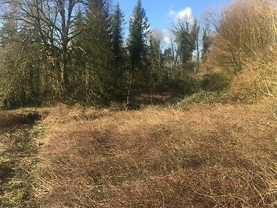 Beautiful Plot of Land in Labroye 62140 France with Building Permission - 1 Acre