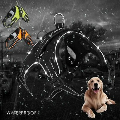 PAWZ® Luxury Large Pet Dogs Harness With LED Adjustable Reflective Harness