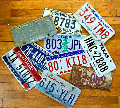 10 Roadkill Condition License Plates for Arts and Crafts