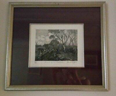 Framed Drawing of Summit on Mount Canobolas by Pamela Griffith (46 x 41cm)