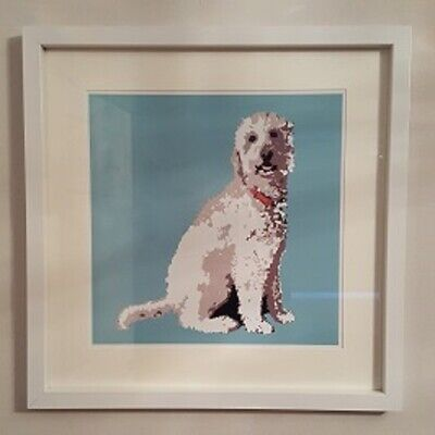Labradoodle Print By Betty Boyns - 30 Cm Sq - Lovely Item For The Home