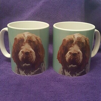 Italian Spinone Mug By Betty Boyns Fab Gift For Spinone Fans Fast Despatch