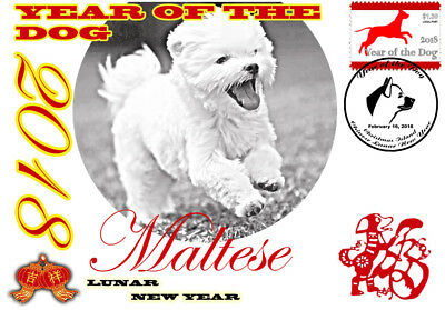 Maltese 2018 Year Of The Dog Stamp Souvenir Cover #2
