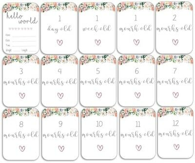 Floral Baby Age Milestone Cards. Pack of 15. Baby Shower Gift. Mum to Be.