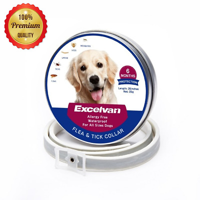 Dogs Cat Collar Flea and Tick Collar Bayer for Large 6Month Protection Adjustabe