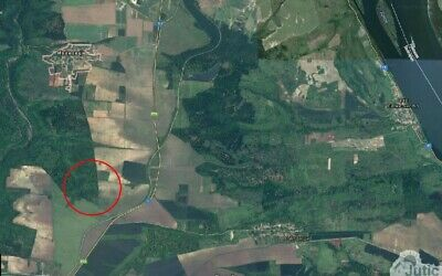 Forest for sale in Bulgaria Land next rd. E79 Property Bulgarian Wood oak house