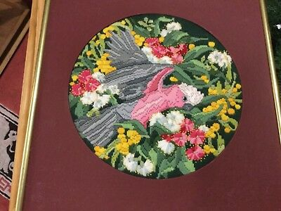 Vintage framed Longstitch embroidery: either of 2 rosellas 40cm or cat 36cm sq