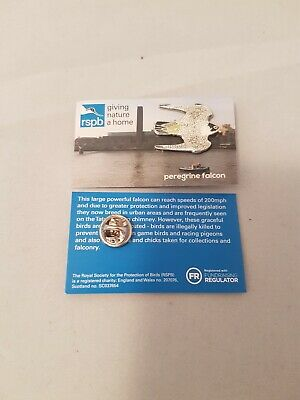 RSPB Pin Badge PEREGRINE FALCON  Special Edition GIVING NATURE A HOME CARD.