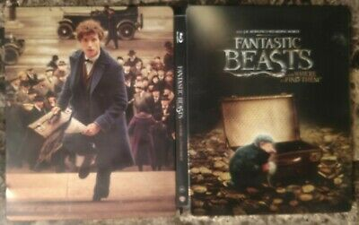 Fantastic Beasts and Where to Find Them 4K + Blu-ray + Digital 2-Disc Steelbook