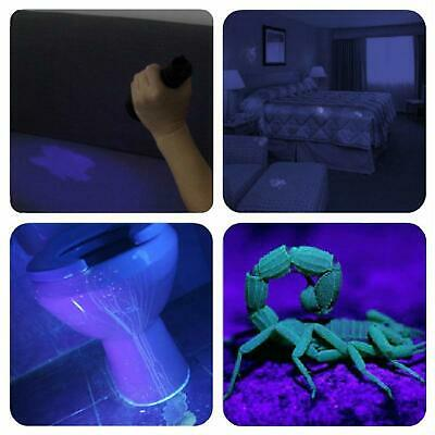 UV Flashlight Black light UV Lights