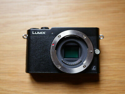 Panasonic Lumix DMC-GM5 no lens