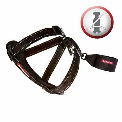 Ezydog Chest Plate Harness + Free Car Restraint Multi Sizes Brand New Seal Pack