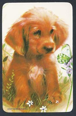 #920.684 Blank Back Swap Card -MINT- Puppy with butterfly